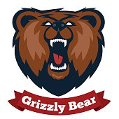 Grizzly mascot, team logo design. angry bear.