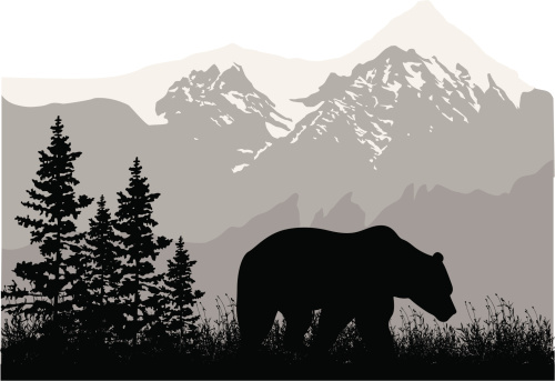 Grizzly Mountains