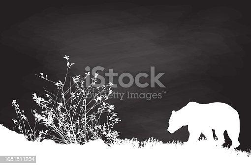 Chalkboard grizzly bear