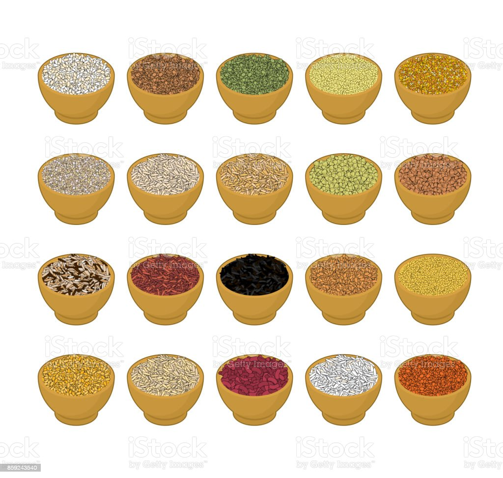 Groats in wooden bowl set. Rice and lentils. Red beans and peas. Corn and barley gritz. Millet and cuscus. Oat and buckwheat. Bulgur and wheat. Grain on white background. Vector illustration vector art illustration