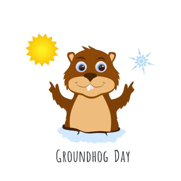 ilustraciones, imágenes clip art, dibujos animados e iconos de stock de día de la marmota. linda marmota predice el tiempo. - groundhog day