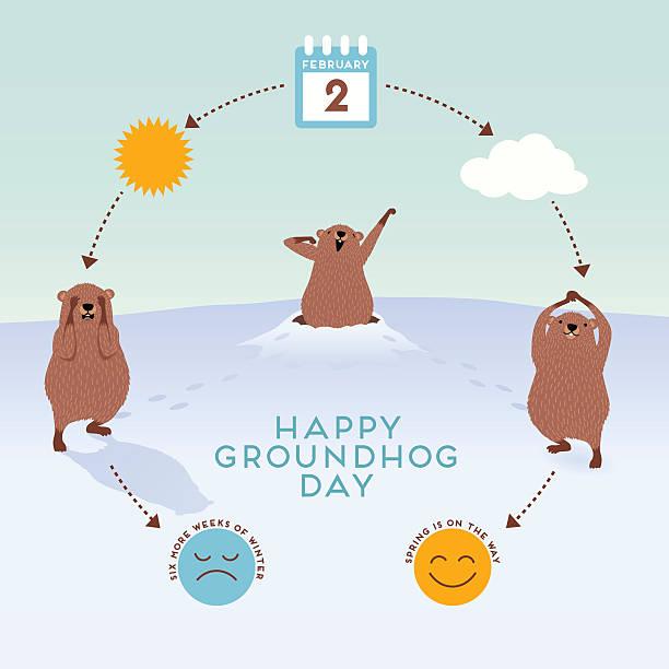 ilustraciones, imágenes clip art, dibujos animados e iconos de stock de groundhog day infographic with cute groundhogs predicting coming of spring - groundhog day