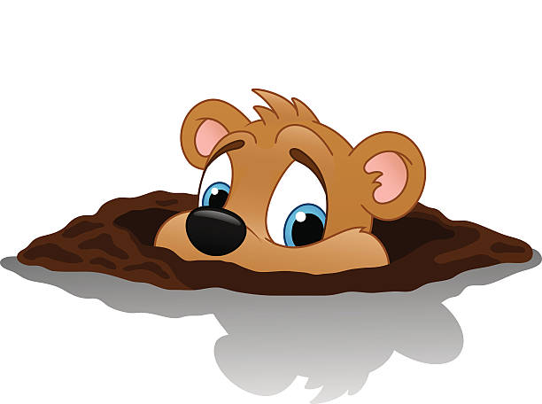 Royalty Free Groundhog Day Clip Art, Vector Images