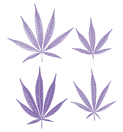 Group of 4 cannabis leaves