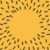 Group of ants around an empty circle. Background with copy space