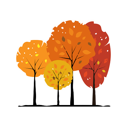Group of autumn trees on a white background