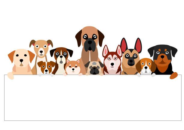 ホワイトボードを持つ茶色の犬のグループ ベクターアートイラスト