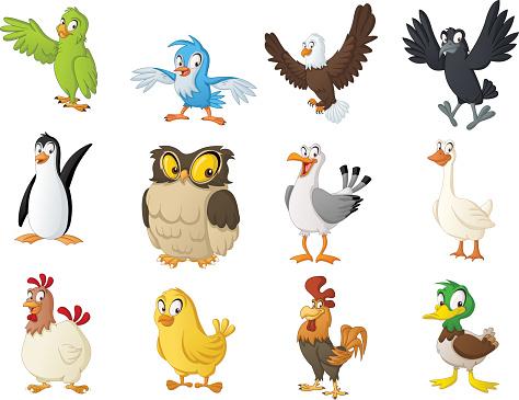 Group of cartoon birds. Vector illustration of funny happy animals.