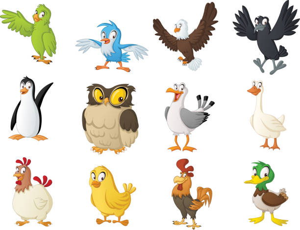 Group of cartoon birds. Vector illustration of funny happy animals. Group of cartoon birds. Vector illustration of funny happy animals. animal call stock illustrations