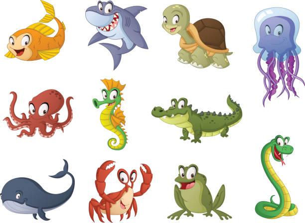 Group of cartoon fish, reptiles and amphibians. Vector illustration of funny happy aquatic animals. Group of cartoon fish, reptiles and amphibians. Vector illustration of funny happy aquatic animals. crocodile stock illustrations