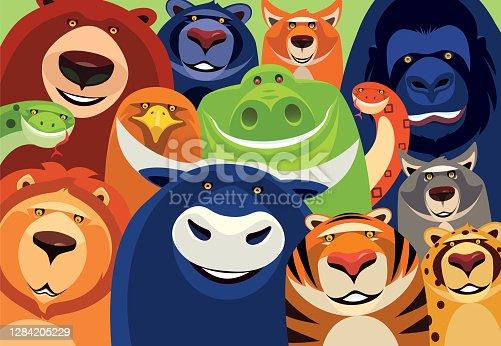 istock group of cheerful wild animals meeting 1284205229