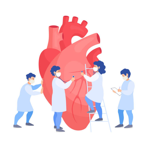 A group of doctors listens to the heart. Examination, diagnosis and treatment of cardiovascular diseases. Vector. A team of doctors examines the heart. Tiny people listen to a heartbeat and make a diagnosis. Banner on the prevention of heart attacks. Vector flat concept. Treatment and checkup of the heart. human heart stock illustrations