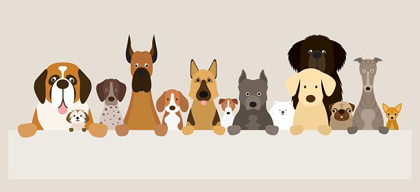 Group of Dog Breeds Holding Banner