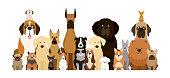istock Group of Dog Breeds Illustration 933638382