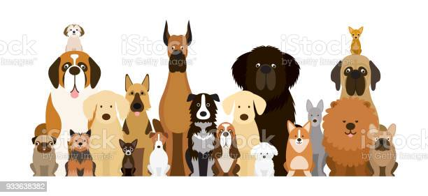 Group of dog breeds illustration vector id933638382?b=1&k=6&m=933638382&s=612x612&h=tfaknupnjlxv ljzdvmjcriuybwhluypjst3jxkfiqq=