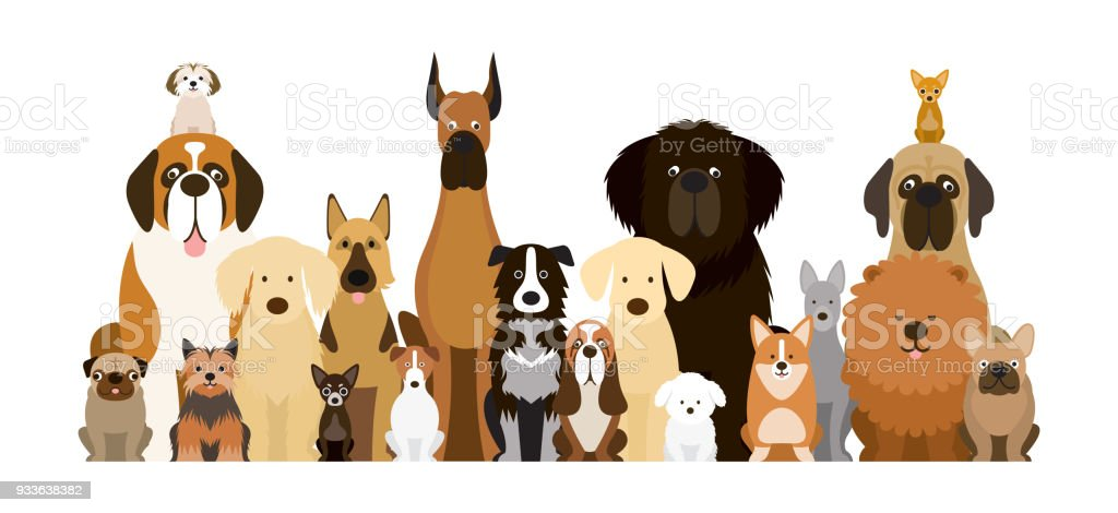 Group of Dog Breeds Illustration vector art illustration
