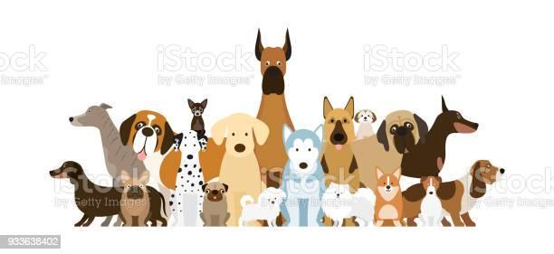 Group of dog breeds illustration vector id933638402?b=1&k=6&m=933638402&s=612x612&h=1dcsdlat79ngdmvd9eesgsvulkvzspu7zm3sh0cvrju=