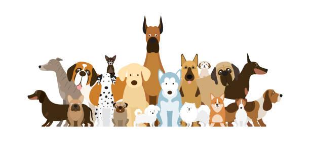 gruppe der hunderassen illustration - schoßhunde stock-grafiken, -clipart, -cartoons und -symbole