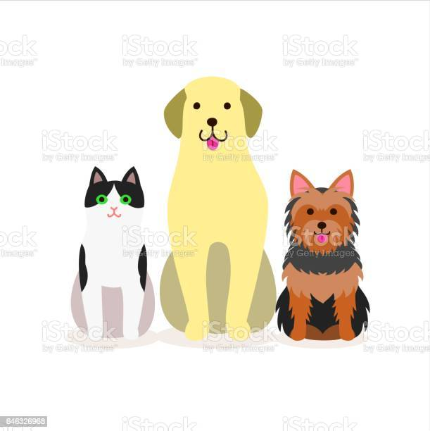 Group of dogs and cat vector id646326968?b=1&k=6&m=646326968&s=612x612&h=pa1kyatpwycqssoyomgaq rduuo0du bdfz8zfsxryi=
