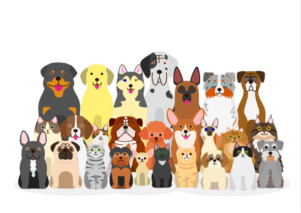 Dog Clip Art, Vector Images & Illustrations - iStock |Puppy Dog And Cat Clipart