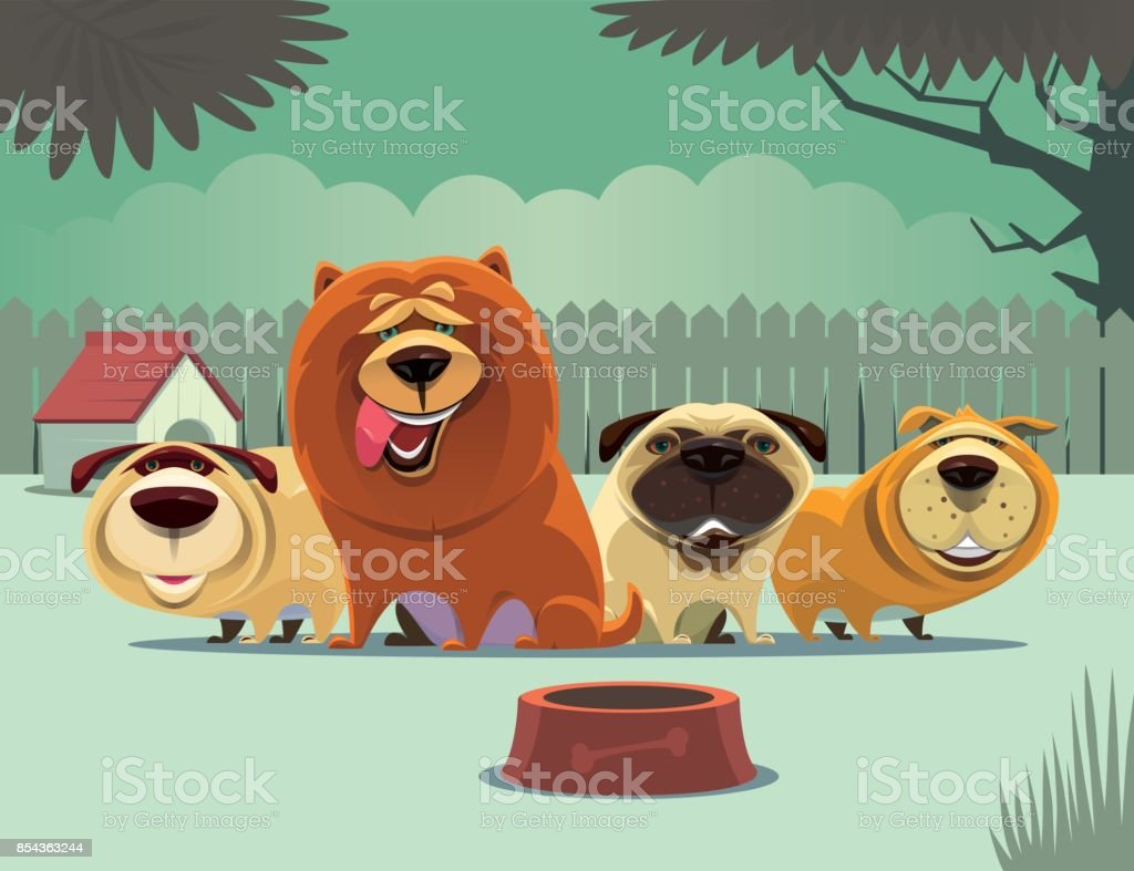 group of dogs waiting for food vector art illustration