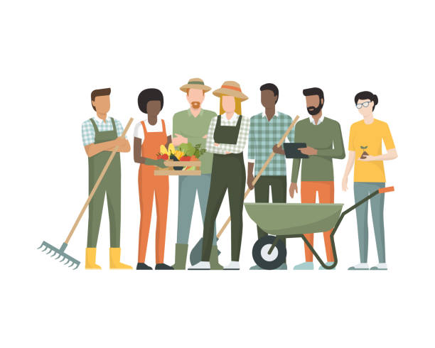 Group of farmers Multiethnic team of farmers standing together, they are holding tools and a crate with organic vegetables farmer stock illustrations