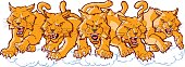 Vector cartoon clip art illustration of a group of tough mean wildcat or bobcat mascots charging or running forward. Each character is on a separate layer.