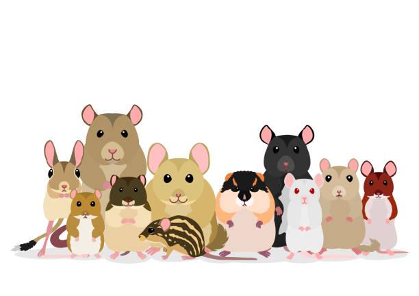マウスのグループ ベクターアートイラスト