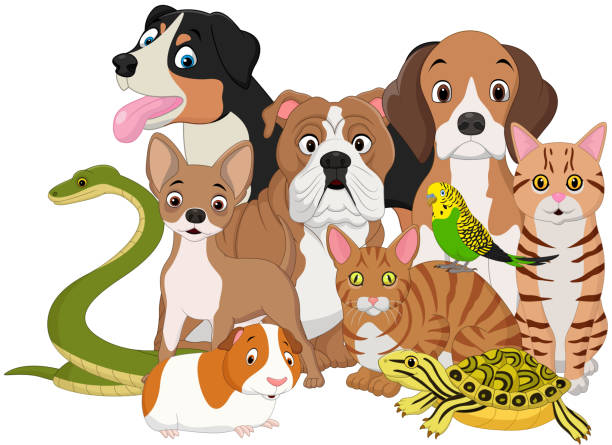 Group of pets cartoon - ilustración de arte vectorial
