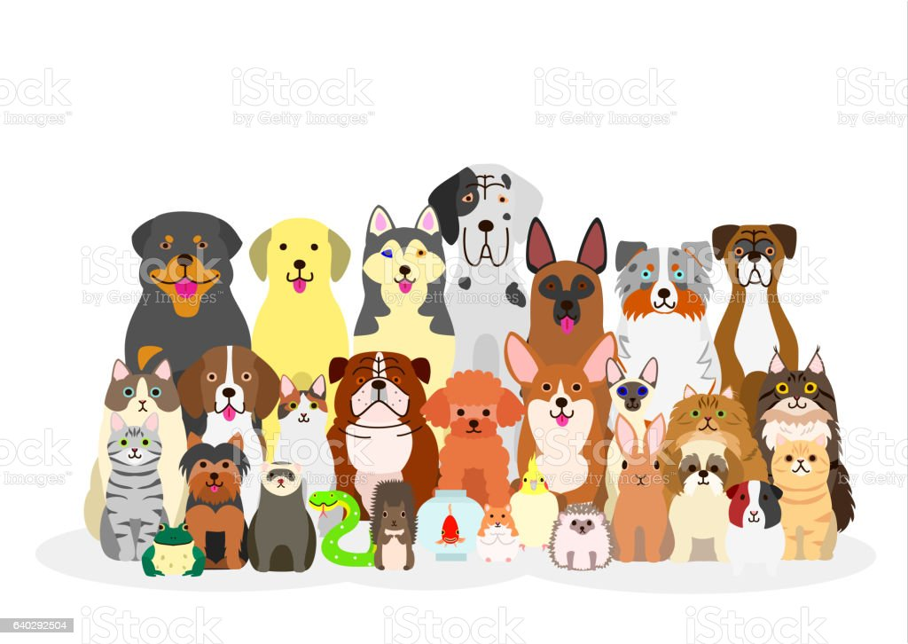group of pets vector art illustration