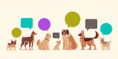 group of purebred dogs with chat bubble speech furry human friends home pets collection concept cartoon animals horizontal vector illustration