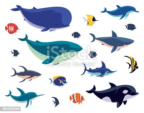 vector illustration of group of sea creatures