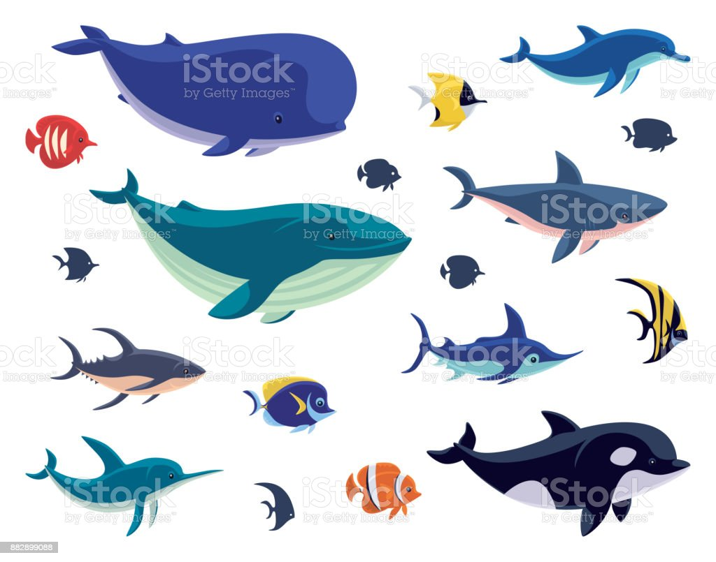 group of sea creatures vector art illustration