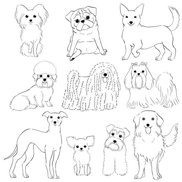 小型犬の手のグループ ライン アートを描かれて ベクターアートイラスト