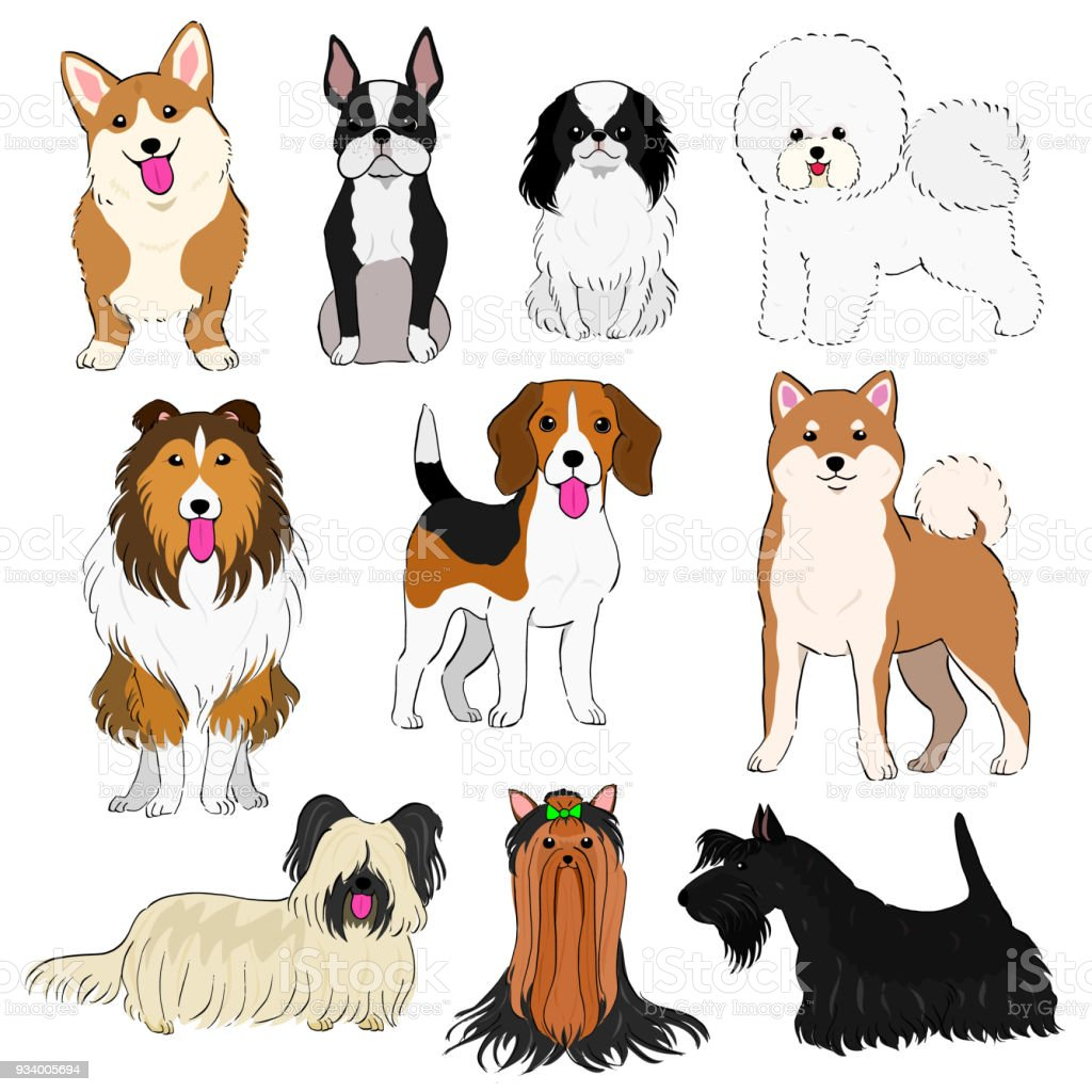 group of small dogs hand drawn vector art illustration