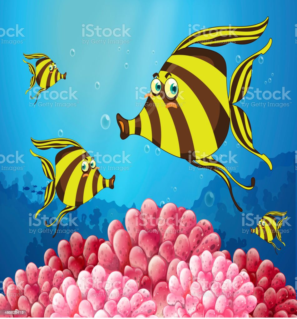 group of stripe-colored fishes under the sea vector art illustration