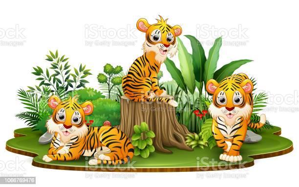 Group of tiger cartoon in the park with green plants vector id1066769476?b=1&k=6&m=1066769476&s=612x612&h=9  rkp8v5yqyvqcw7qojad8a0tb8yrri3nb2b0a7dwm=