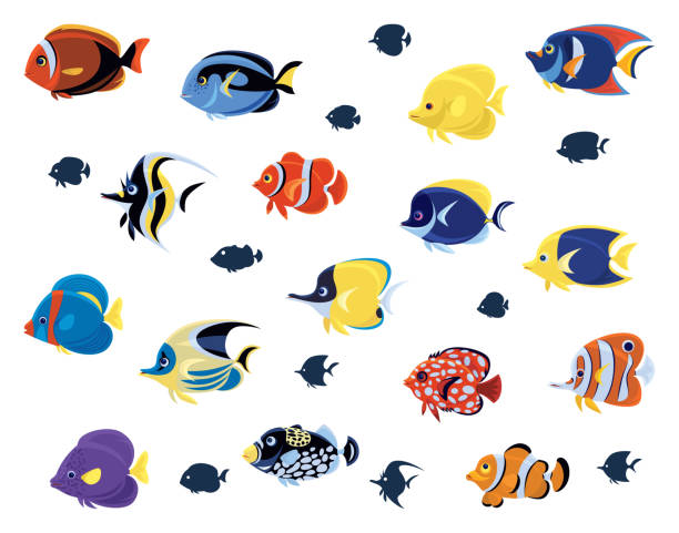 group of tropical fishes vector art illustration