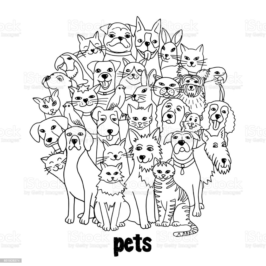 Group of various pets