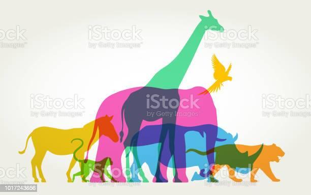 Group of wild animals vector id1017243656?b=1&k=6&m=1017243656&s=612x612&h=o0djr932swwqchu3pub0mphcadcgfmib1dwrm8zdpe0=