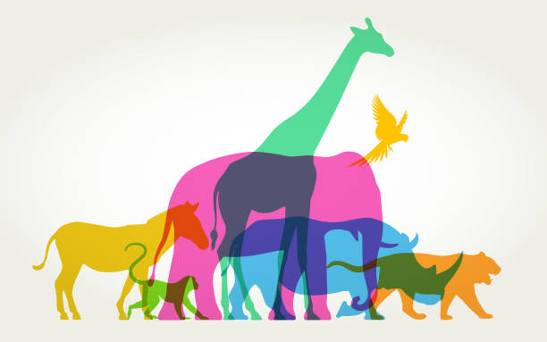 Group of Wild Animals Colourful silhouettes of wild animals living organism stock illustrations