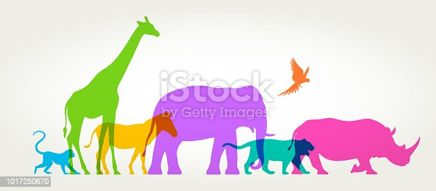 Colourful silhouettes of wild animals