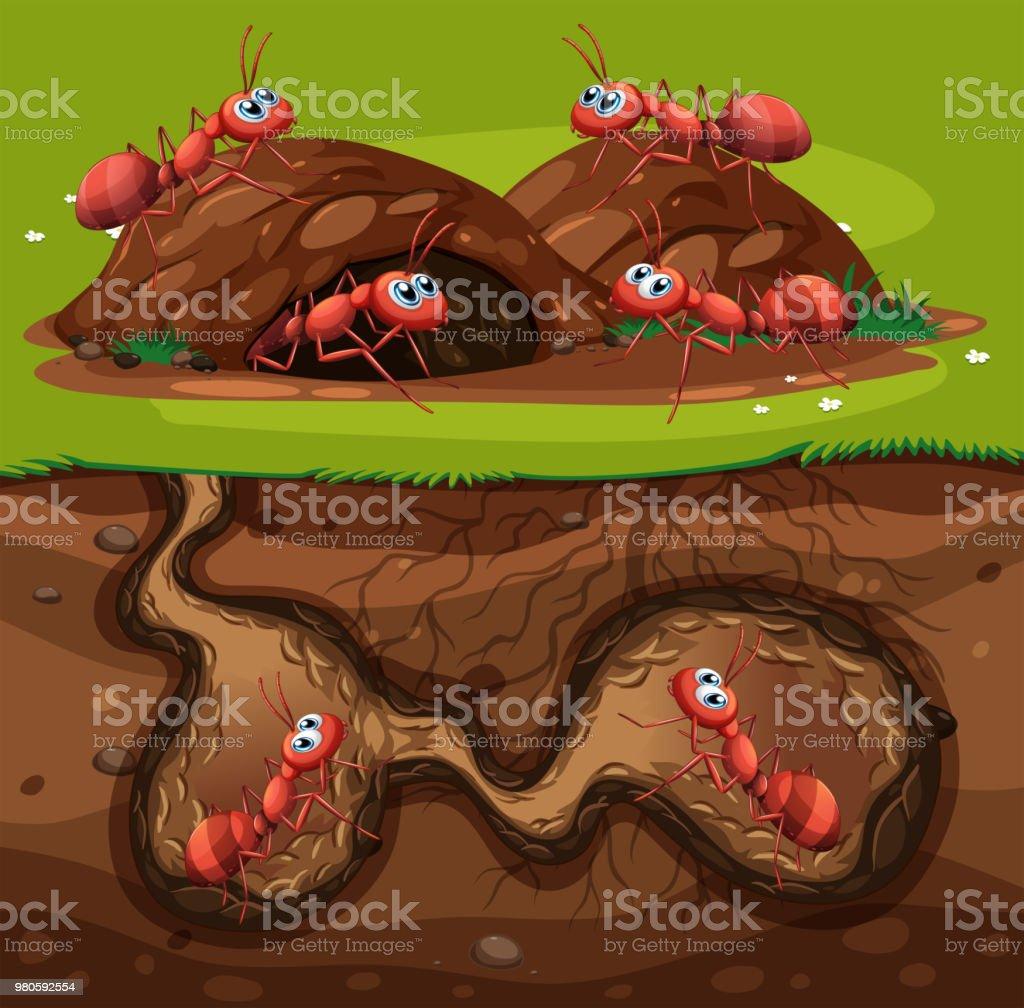 Eine Gruppe von Arbeiten Ameisen im Loch – Vektorgrafik
