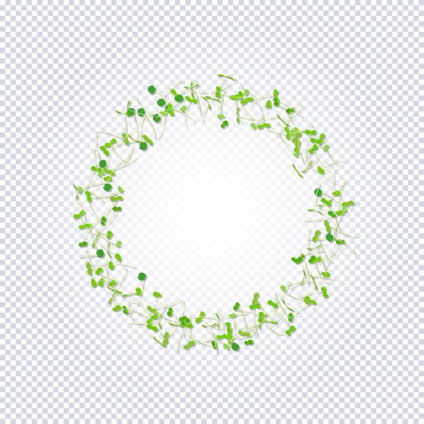 illustrazioni stock, clip art, cartoni animati e icone di tendenza di group of young sprouts seedlings pattern. - erba medica