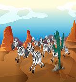 Group of zebra running at the desert