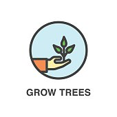 Grow trees colored icon.