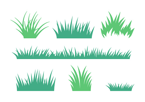 Grass and lawn growth cultivated spring foliage illustration.