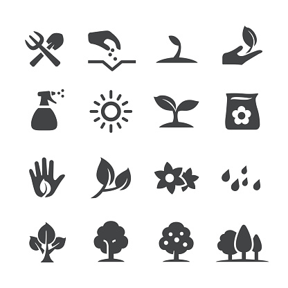 Growing Icons - Acme Series