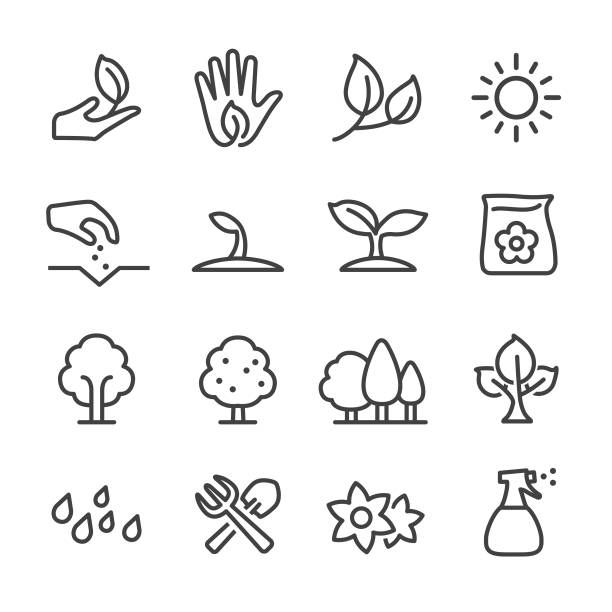growing icons - line series - trees stock illustrations