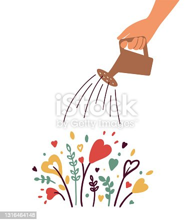 istock Growing love vector illustration with human hand with watering can irrigates heart shapes flowers 1316464148